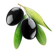 Oliivi huippulaatu mini mini